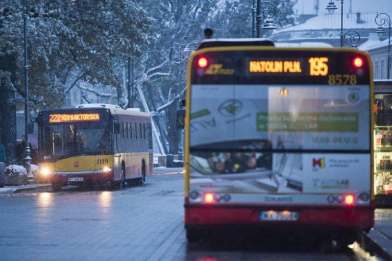 zdjęcie autobusów w zimie